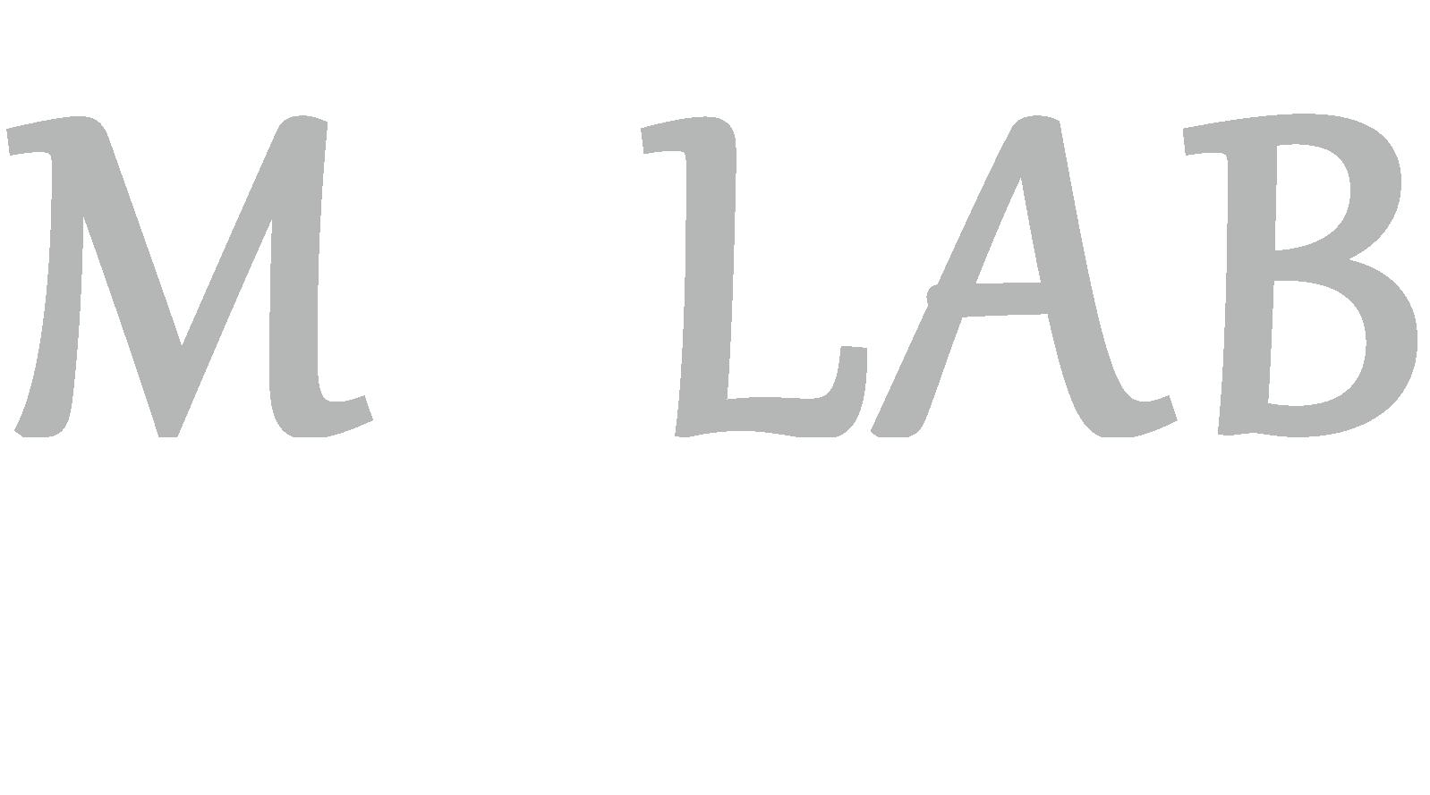欢迎来到马聪实验室 Logo